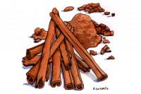 Cinnamon_3x2