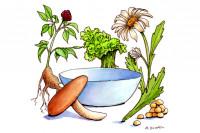 Sun-Farms-Vegetable-Soup001_3x2