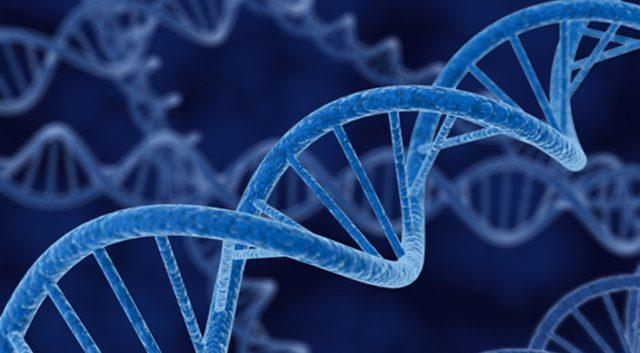 Course Genetics 640×353